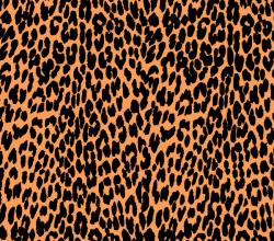 Vector Leopard Print Graphics