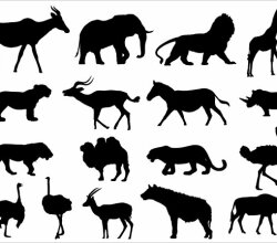 Animals Silhouettes Vector