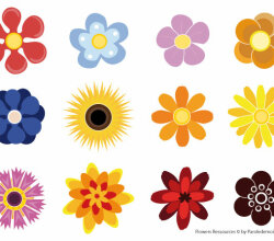 Flowers Resources