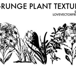 Grunge Plant Textures Vector