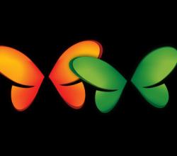 Free Butterflies Logo Vector