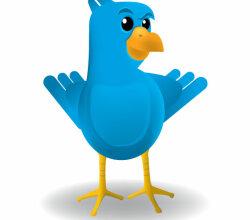 Smug Twitter Bird Vector Art