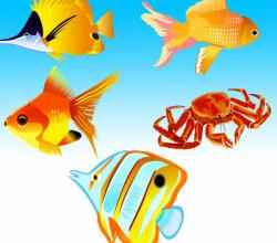 Fish Vector Free Download