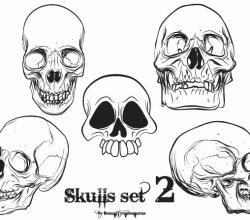 Free Vector Skulls Pack For Adobe Illustrator