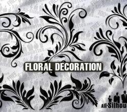 Vector Floral Ornament Decoration