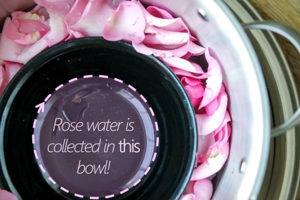 Rose Water DIY