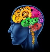 10503774-brain-lobe-sections-made-of-cogs-and-gears-representing-intelligence-and-divisions-of-mental-neurolo