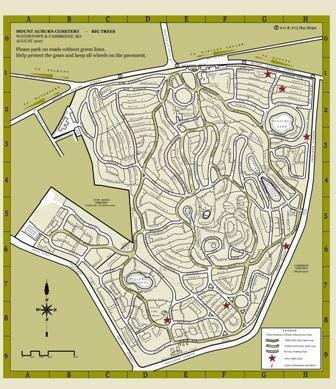 MAC Map