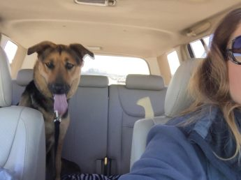 Holly on her freedom ride