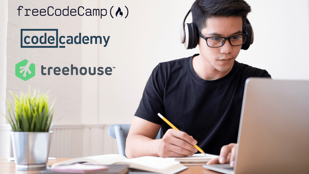 freeCodeCamp Versus Codecademy Versus Team Treehouse Review