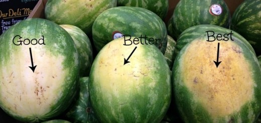 Here are some amazing farmer's tips on picking the perfect Watermelon