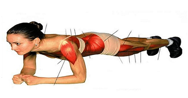 All about the Plank