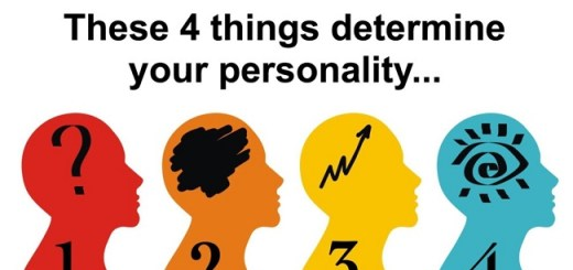 New study reveals it takes just 4 elements to determine your personality