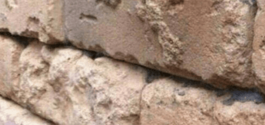 This brick wall illusion drove everyone on the internet nuts; can you spot the hidden image?