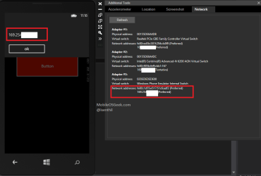 How to Get the IP Address of the Windows Phone 8 Programatically using C# ?