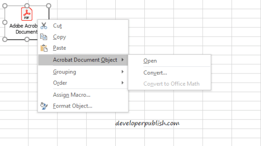 How to Embed a PDF File in an Excel Worksheet?