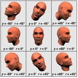 Google's face API detects faces at a range of different angles