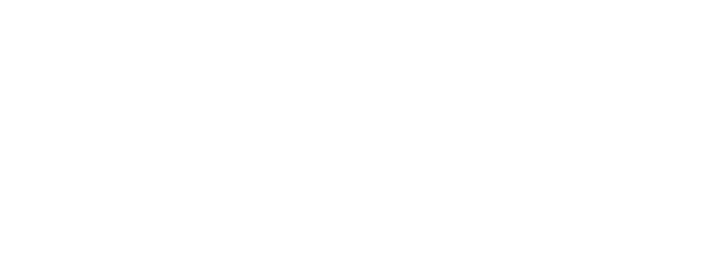 LifeVit LOGO, white