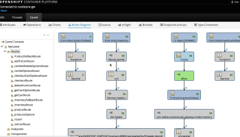 EDI Transformations with Fuse Integration Services (FIS