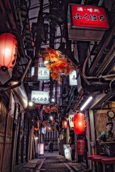 A street in Shinjuku full of old style Japanese restaurants that mostly specialise in chicken on sticks (Yakitori in Japanese). If you come to Tokyo this place is a must! I edited it using a program called Aurora to give it a bit of an HDR feel