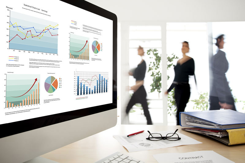 Professional Business Accountants