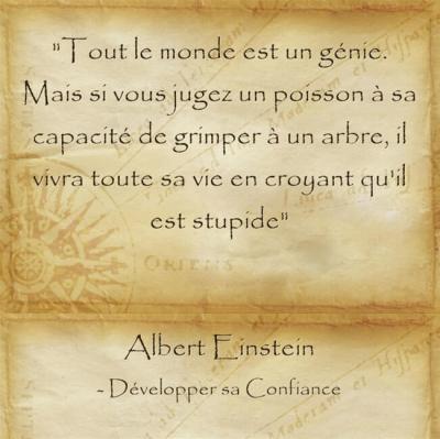 Citation d'Albert Einstein sur l'importance de croire en ses capacités