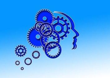 Image symbole du fonctionnement cérébral pour apprendre à savoir dire non