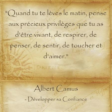 Citation d'Albert Camus sur la chance de vivre pour garder espoir