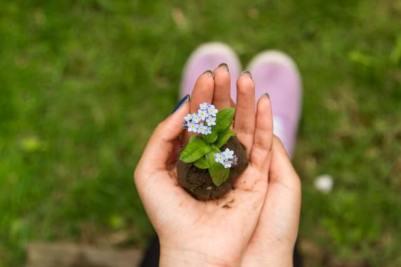 Accroître son imagination avec la main verte