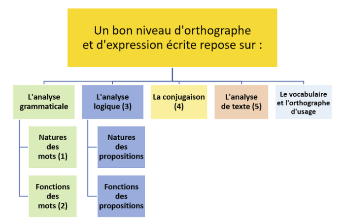 Schéma - Un bon niveau d'orthographe et d'expression écrite repose sur des acquis dans 5 grands domaines