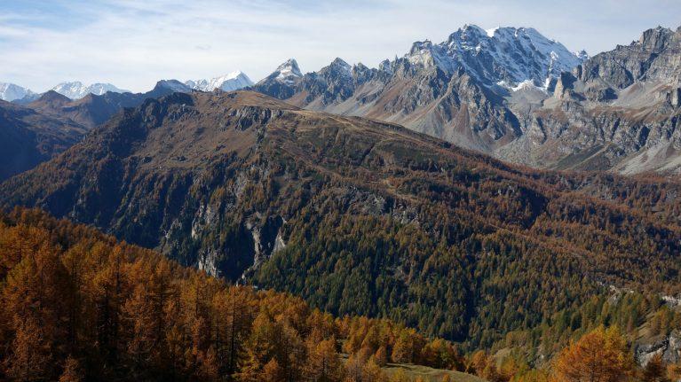 Read more about the article Salita al monte Cazzola