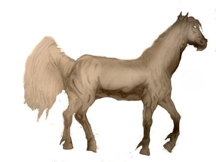 Safonov_cavallo