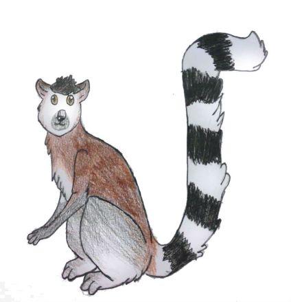 Zedda_lemure