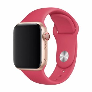 DELUXE SERIES SPORT BAND (40mm) RED