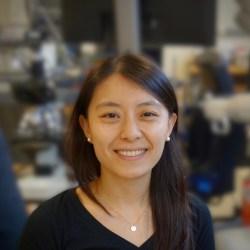 Final - Melinda Chen