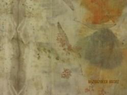 (3)-6-detail with eucalyptus flower