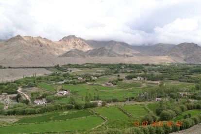 The Green Colors of Leh Village