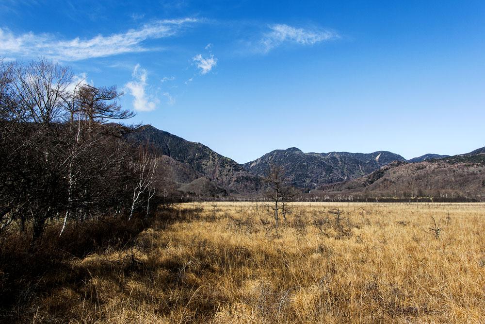 Nikko Senjogahara Marshland