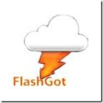 flashgot_thumb
