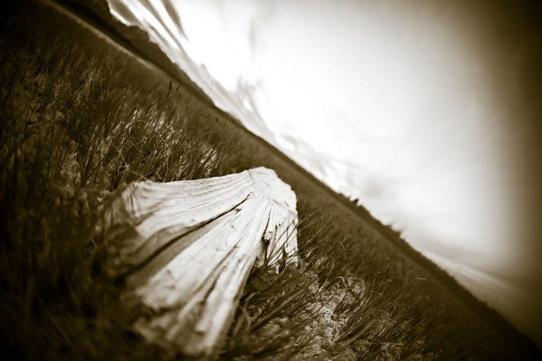 Manmoth-2014-2295