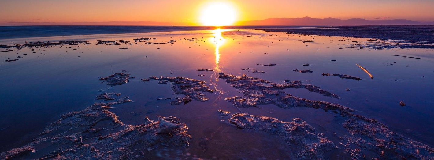 Salton-Sea-Week-2017-4