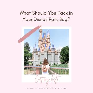 Disney Park Bag