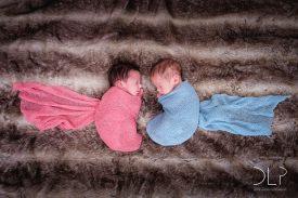 dlp-statham-twins-8049