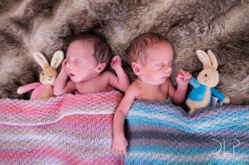 dlp-statham-twins-8077