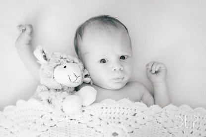 dlp-barnes-family-8666