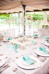 dlp-biscarini-wedding-6384