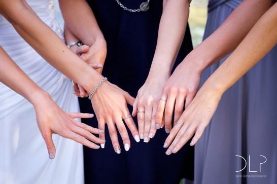 DLP-Gonelli-Wedding-0110