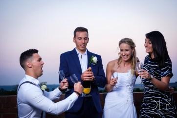 DLP-Gonelli-Wedding-0197