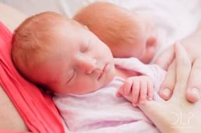 dlp-brown-twins-5135