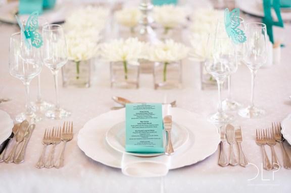 dlp-biscarini-wedding-5296